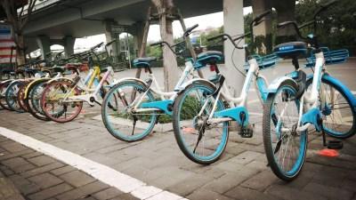共享单车用户体验报告:青桔单车获得第一名